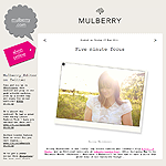 The Mulberry Blog: 5 Minute Focus (May 2011)